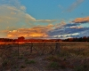 Eugowra Sunset - Peter Burford