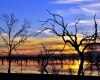 Menindee Lake - Photographer: Peter Burford