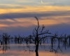 Menindee Sunset - Photographer: Peter Burford